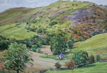 Bunster Hill above Dovedale (NC221)
