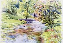 The River Bradford below Youlgrave (NC242)