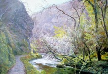 The Lions Head Rock, Dovedale (NC293)
