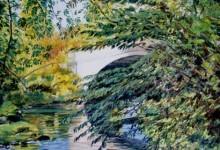 The River Manifold below Ilam Hall (NC 301)