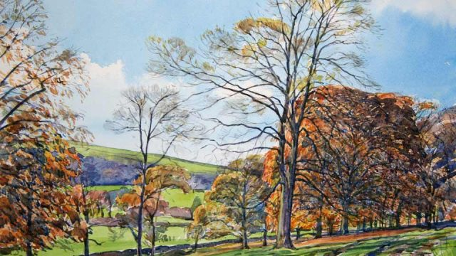 Autumnal Beeches, Ilam  (NC 328)