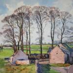 Lees Barn Trees, Derbyshire (NC 314)