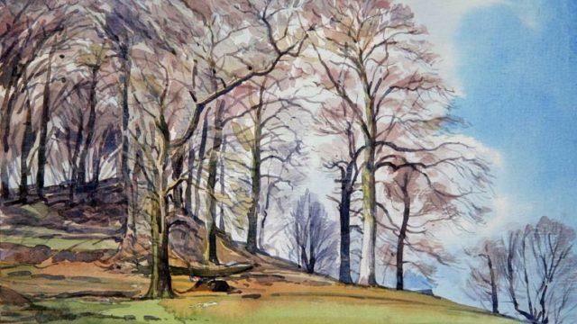 Peak Tor Trees (NC 335)