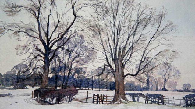 Winter Trees near Sturston (NC 333)
