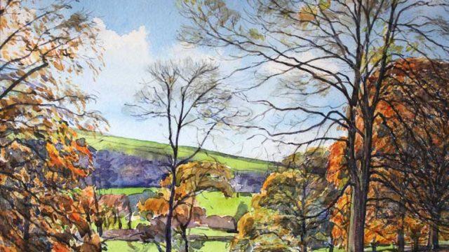 Autumnal Beeches, Ilam  (NC 328)