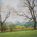 The Old Ash Tree (NC 363)